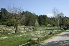 paesaggio006