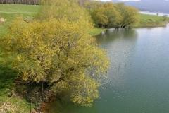 paesaggio011